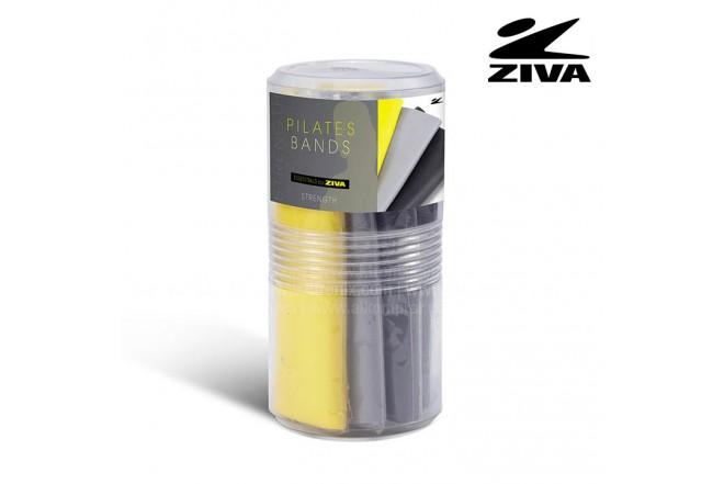 Bandas de estiramiento ZIVA