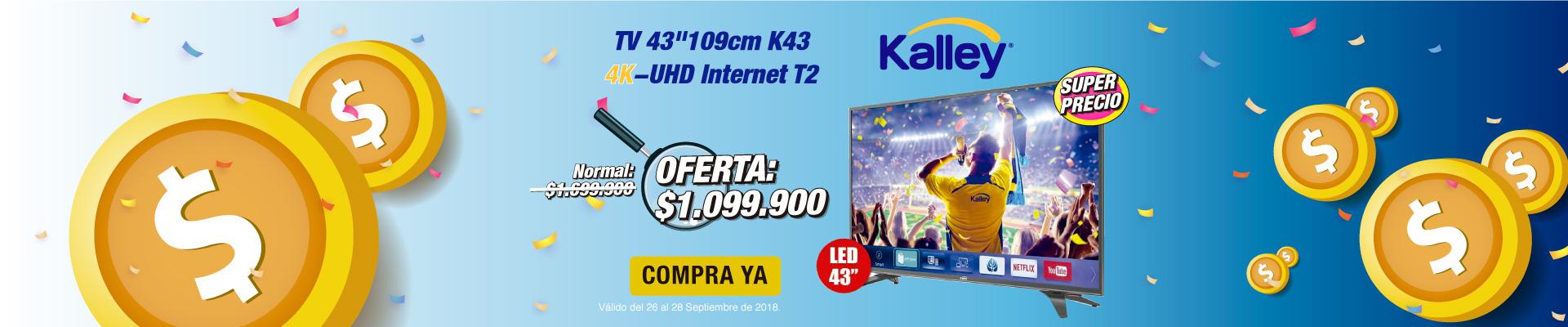 BP ALKP TV 43
