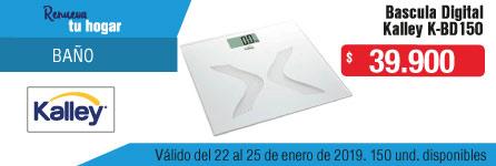 ak-inscat-3-hogar-articulos-basculadig-ene14