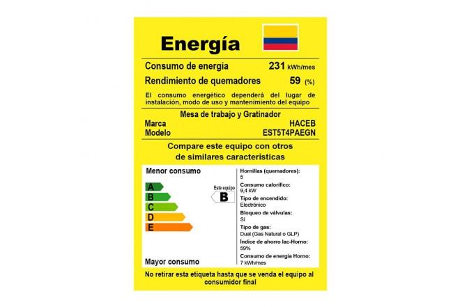 Estufa de Piso HACEB SP-T GAS EE GN Plata5