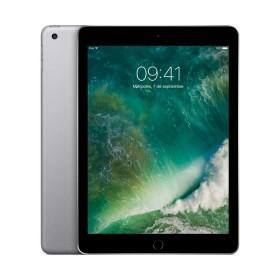 iPad WiFi 128GB Sgrey