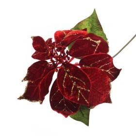 Flor Pascua Roja Con Dorado