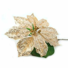 Flor Pascua Dorado Blanco
