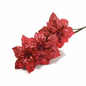 Flor De Pascua  Rojo