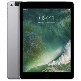 iPad WiFi +4G 32GB Space Grey