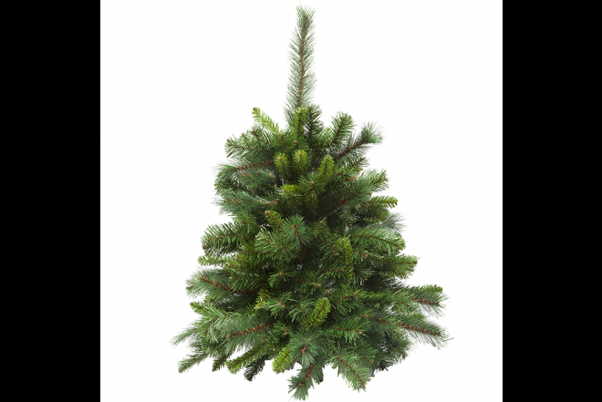 Arbol Navideño Sable Fir Tree 2.24 Metros_2