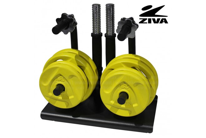 Estudio de discos 20kg ZIVA Amarillo