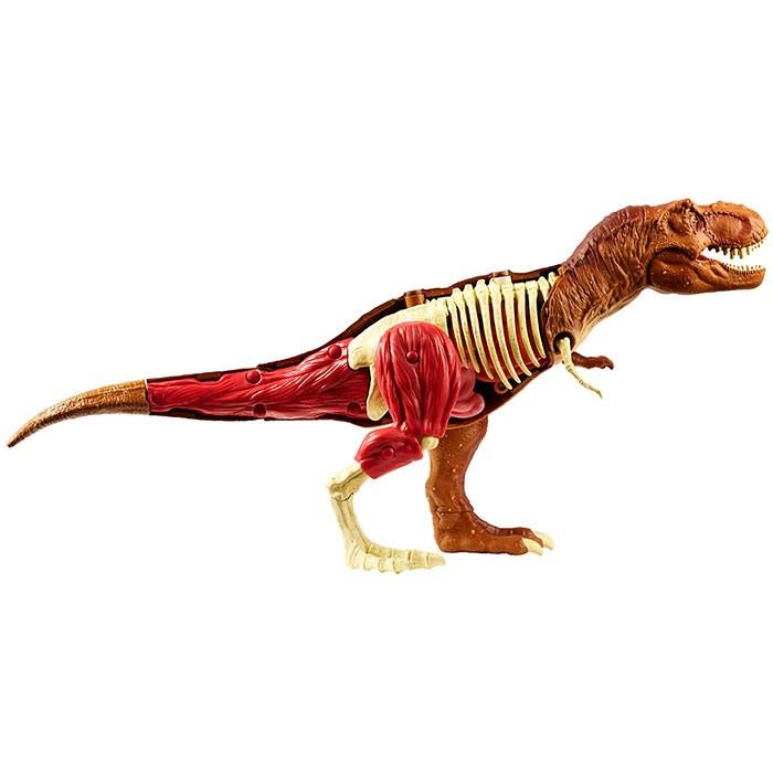 JURASSIC WORLD Kit de Anatomía de Tiranosaurio Rex Alkosto Tienda Online