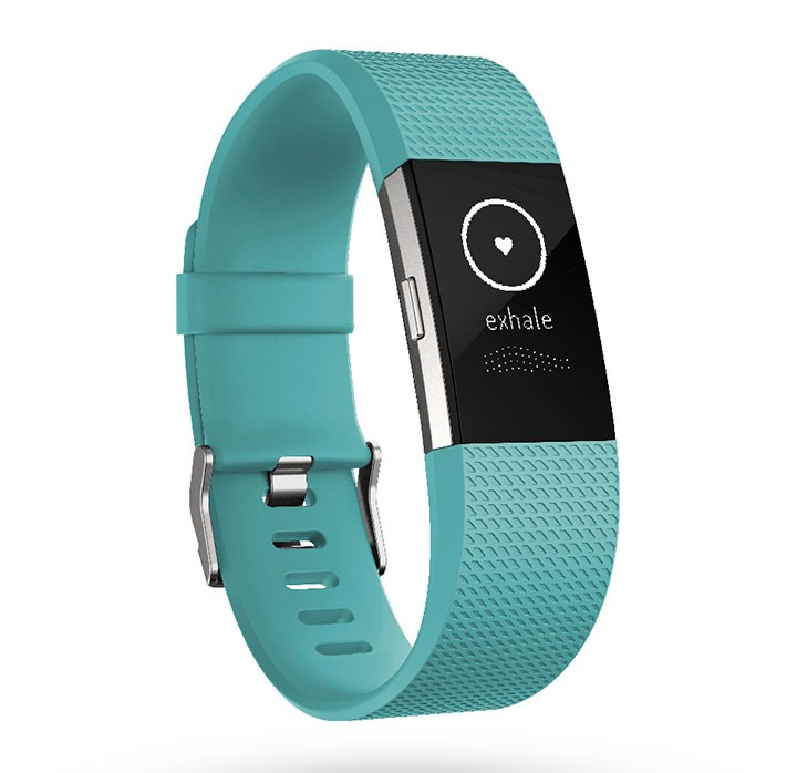 instruction manual fitbit charge 2