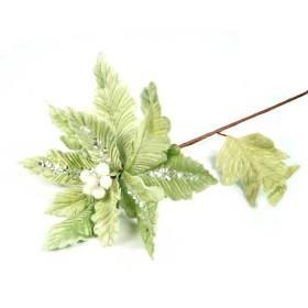 Flor Pascua Sage