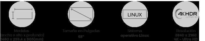 Medidas atributos Kalley Serie T 65 pulgadas